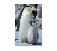 Snowhill Emperor and Chick Art Print