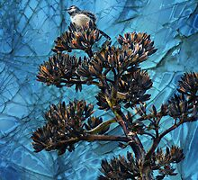 Bird in a Cracked-Up World by Barbara Manis