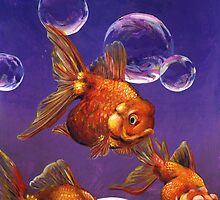 Fish and Bubbles by Alex e Clark