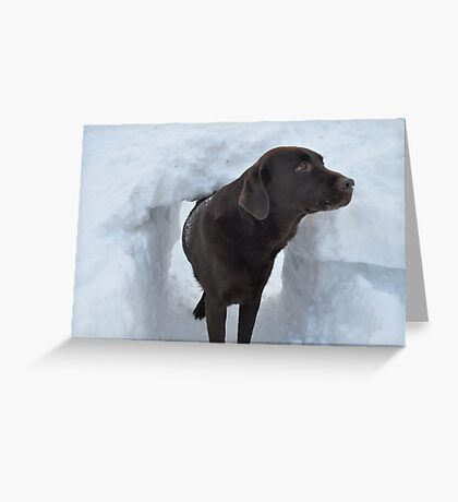 What's the Password for Entry Into The Snow Fort?? Greeting Card