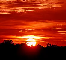 An Orange Ending by Tim Scullion