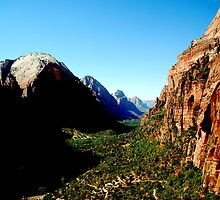 A canyon in Zion by blakepack