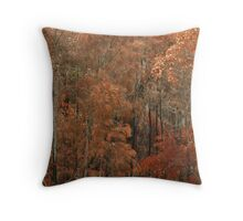 Fires Path Throw Pillow