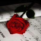Think of me by julayneluu