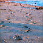Footprints by Kimberly Kay Spies