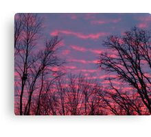 WAFTS OF PINK Canvas Print