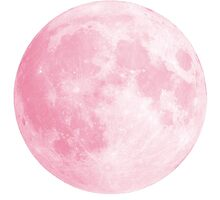 Pink Full Moon by Anna Wilson