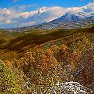 AUTUMN SNOW SUGARLANDS VALLEY by Chuck Wickham