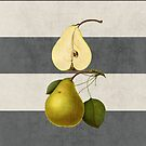 botanical stripes - pear by beverlylefevre