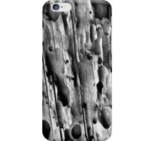 Potholes iPhone Case/Skin
