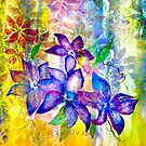 Clematis Summer by ©Janis Zroback