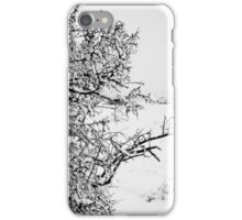 Stark Cold iPhone Case/Skin