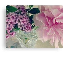 DREAMY PINKS Canvas Print