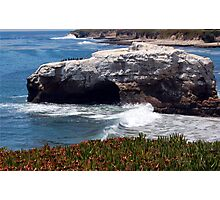 Natural Bridges State Beach Photographic Print