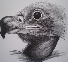 Baby Eagle by EllEssDee