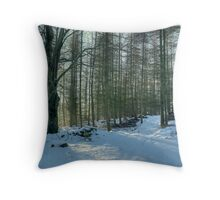 Mid day,Mid Winter. Throw Pillow