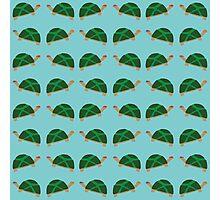 Tiny Mutant Ninja Turtles Photographic Print