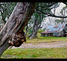 Wallace Hut, Falls Creek, Victoria by Darren Greenwell