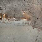 winter space by Patrycja Makowska