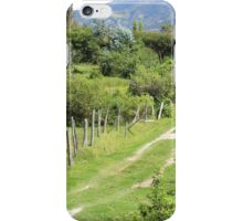 Dirt Path Through a Pasture iPhone Case/Skin