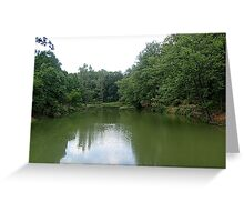 Green mirror... Greeting Card