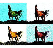 Colorized Horse Photographic Print