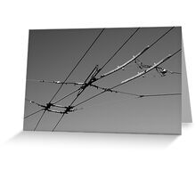 Tram Cables Greeting Card