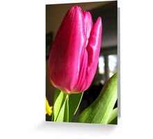 Pink Shine Greeting Card