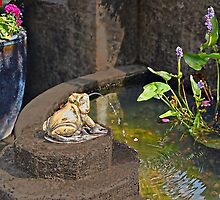 Bronze Frog in Paradise by Marion Daly