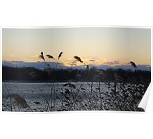Sunset over Shark River, New Jersey Nature Poster