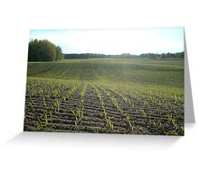 New Crop Greeting Card