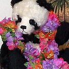 Hawaiian Panda Bear ~ Aloha! by Marjorie Wallace
