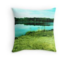 our spot Throw Pillow