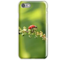 Hunting Ladybird iPhone Case/Skin