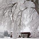 I like winter by AideRaal