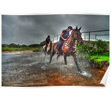 Water Horses HDR  Poster