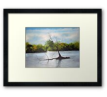 Dead Autumn wood Framed Print