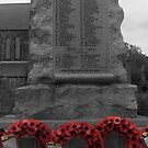 We will remember them! by amylw1