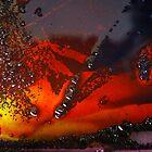 Collision by David Lamb