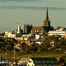 St Mary's Basilica,Geelong by Joe Mortelliti