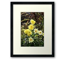 Colourful Competition Framed Print