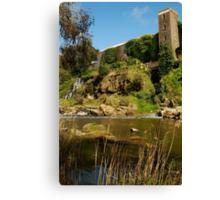 Buckley Falls Geelong. Canvas Print