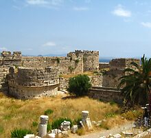 Kos Castle, Kos Island, Greece by Maria1606