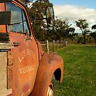 Bedford Truck, Brisbane Ranges by Joe Mortelliti
