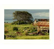 Time Capsule,Bellarine Peninsula Art Print