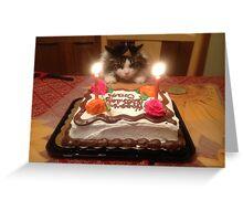 Kitty Cat Birthday Hat Greeting Card