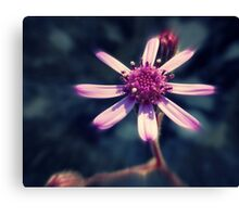 Shining Flower  Canvas Print