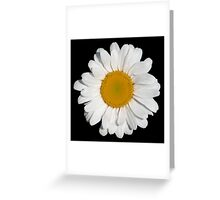 'Perfect Daisy' Greeting Card