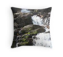 Summer Falls Throw Pillow
