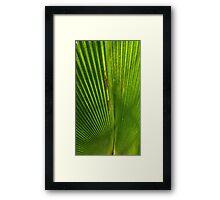 Abstract leaf I Framed Print